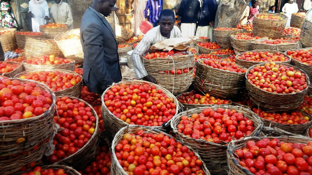 Agriculture, surest way out of recession, says Alake of Egbaland